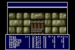 483322-wizardry-i-ii-turbografx-cd-screenshot-this-is-a-door-yup.png
