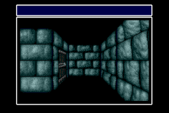 484573-wizardry-iii-iv-turbografx-cd-screenshot-you-can-also-remove.png
