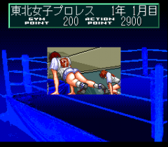 548477-wrestle-angels-double-impact-turbografx-cd-screenshot-training.png