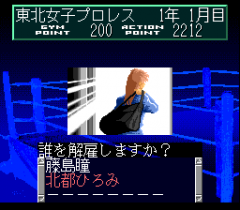 548479-wrestle-angels-double-impact-turbografx-cd-screenshot-you.png