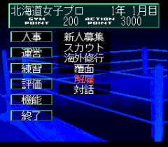 548488-wrestle-angels-double-impact-turbografx-cd-screenshot-management.png