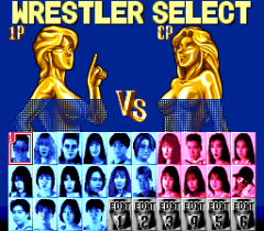 477597-super-fire-pro-wrestling-queen-s-special-turbografx-cd-screenshot.png