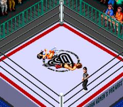 477602-super-fire-pro-wrestling-queen-s-special-turbografx-cd-screenshot.png