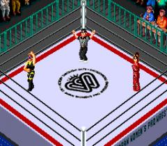 477609-super-fire-pro-wrestling-queen-s-special-turbografx-cd-screenshot.png