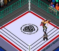 477610-super-fire-pro-wrestling-queen-s-special-turbografx-cd-screenshot.png
