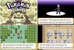Pokemon-Citrite-screen.png