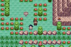 Pokemon_Versione_Reliquia_Gotica_03.png
