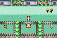 Pokemon_Zoala-4-.png