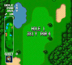 466028-power-golf-turbografx-16-screenshot-the-area-is-shown-completely.png