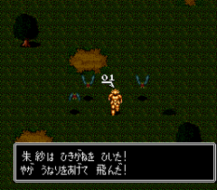 482766-susanoo-densetsu-turbografx-16-screenshot-battle-at-night.png