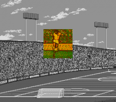 548369-tecmo-world-cup-super-soccer-turbografx-cd-screenshot-intro.png