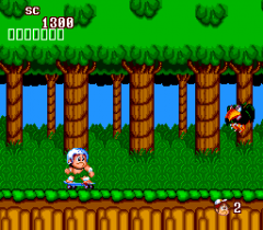 95489-new-adventure-island-turbografx-16-screenshot-on-a-skateboard.png