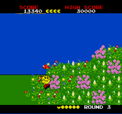 98113-pac-land-turbografx-16-screenshot-i-ve-encountered-a-magical.png