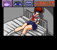 485059-shiawase-usagi-2-turbografx-cd-screenshot-the-beginning.png