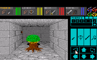 426036-dungeon-master-theron-s-quest-turbografx-cd-screenshot-a-happy.png