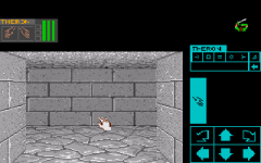 426025-dungeon-master-theron-s-quest-turbografx-cd-screenshot-entering.png