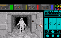 426032-dungeon-master-theron-s-quest-turbografx-cd-screenshot-almost.png