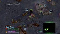 avp hive 2.jpg