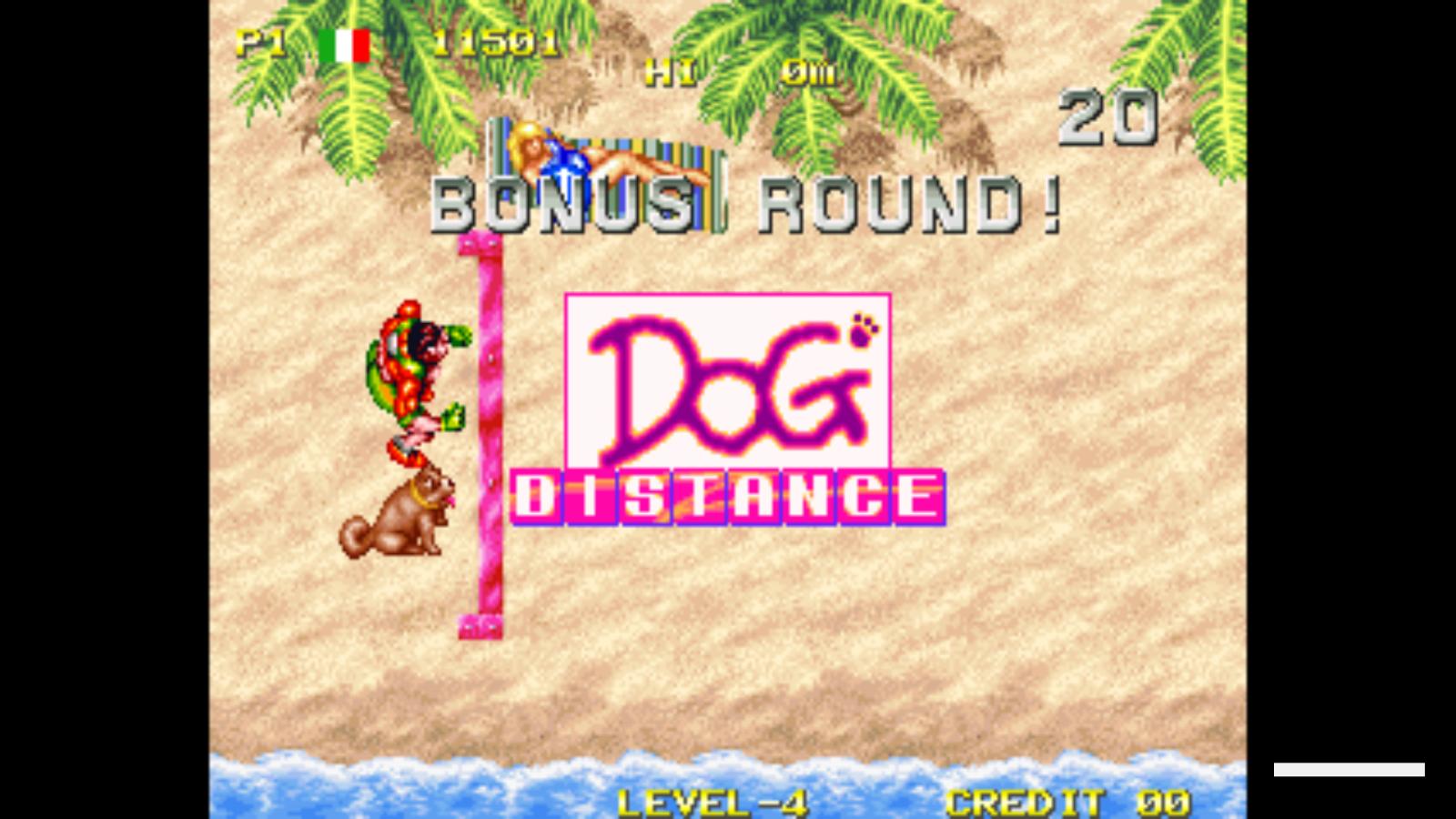 Windjammers : Flying Disk Game - neo-geo