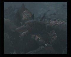 67100-resident-evil-gamecube-screenshot-intro-cinematic-showing-one.jpg