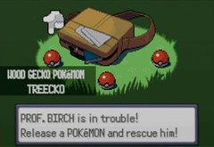 109701-pokemon-emerald-version-game-boy-advance-screenshot-choosing.jpg