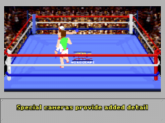 4-D Boxing (DOS)