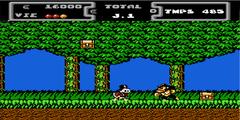 DuckTales : La Bande à Picsou (NES)
