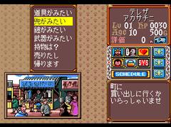 470087-princess-maker-turbografx-cd-screenshot-shopping-menu.png