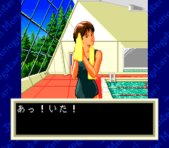 476574-jantei-monogatari-turbografx-cd-screenshot-this-movement-is.png