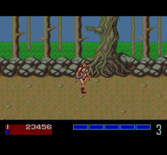 386617-golden-axe-turbografx-cd-screenshot-starting-the-game-as-tyris.png