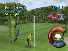 Actua Golf 2.jpg