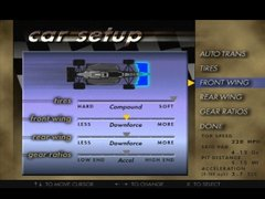 Andretti Racing 2.jpg